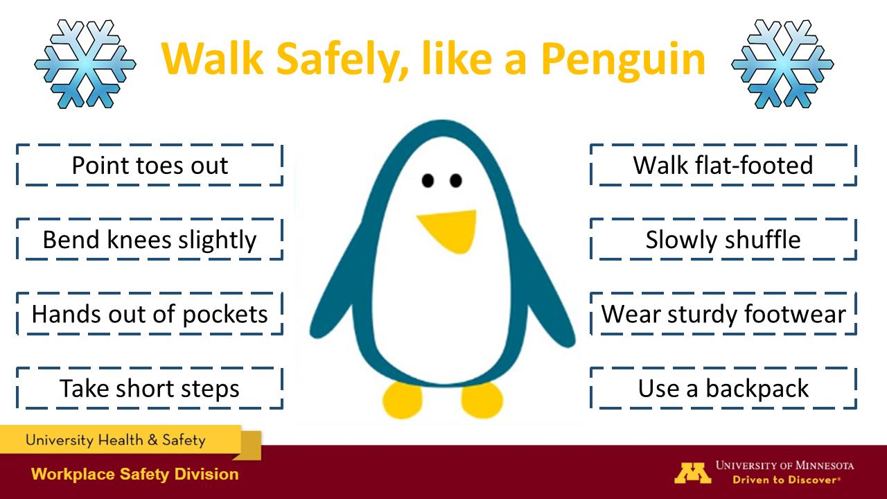https://facilities.umn.edu/walk-safely-and-around-campus